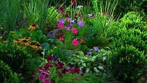 beautiful flower garden wallpapers free download ...
