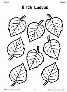 Free coloring pages of birch leaf