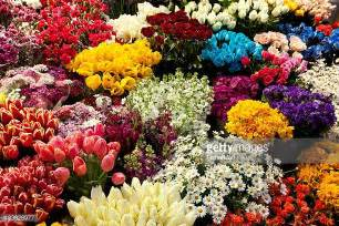 sunflower wreath flower market stock photos and pictures getty images