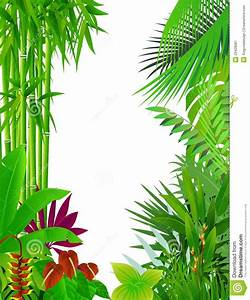 Foliage clipart jungle background - Pencil and in color ...
