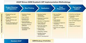 sap platform With implementation methodology template