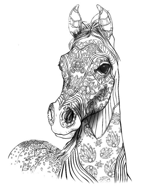 Cindy Elsharouni   Horse coloring pages, Adult coloring