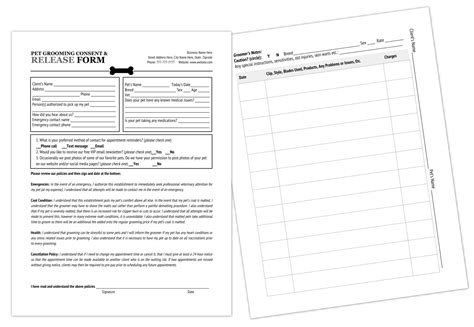grooming release form template printable