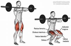 Barbell Front Squat Exercise Instructions And Video