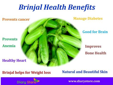 brinjal health benefits nutritional facts eggplant