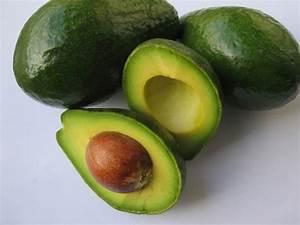 Melone Selber Ziehen : avocadokern einpflanzen avocado selber ziehen ~ Frokenaadalensverden.com Haus und Dekorationen