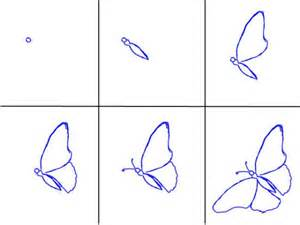 Drawing Butterflies Step by Step