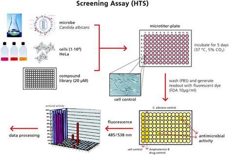 high throughput screening assays