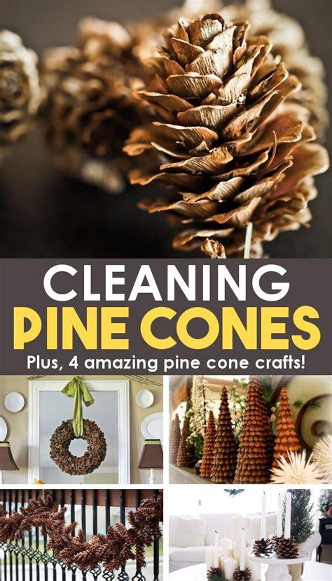decorating  pine