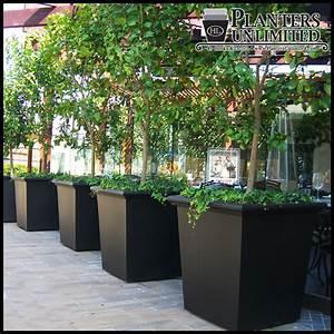 Square Fiberglass Planters - Commercial Sized Planters ...