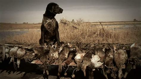 bass pro shops fall hunting classic tv commercial