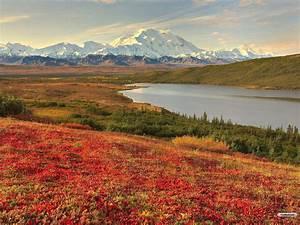 Cool HD Nature Desktop Wallpapers: Beautiful Landscape ...