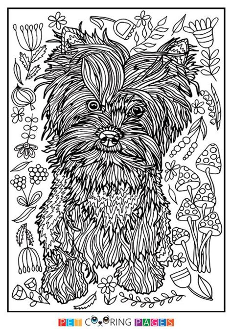 printable yorkshire terrier coloring page    simple  detailed
