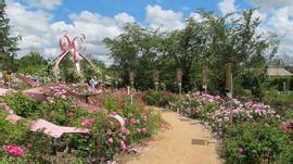 parc oriental de maul 233 vrier jardin japonais sommaire