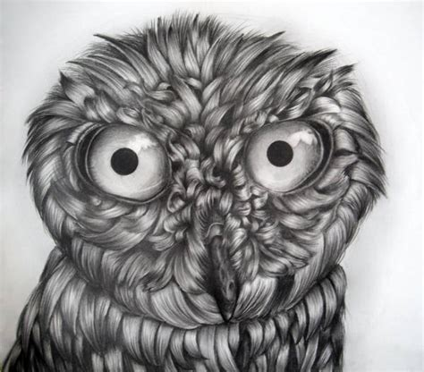 owl drawings art ideas  premium templates