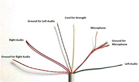 Apple Earbud Wiring Diagram the apple earpods with mic and remote are earbud style