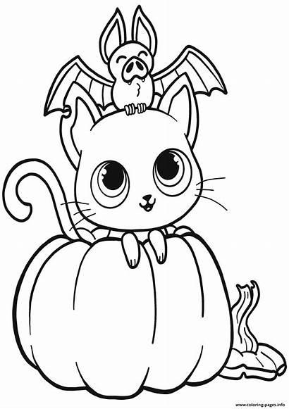Coloring Halloween Pumpkin Cat Dessin Coloriage Bat