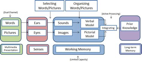 cognitive theory  multimedia learning wikiversity