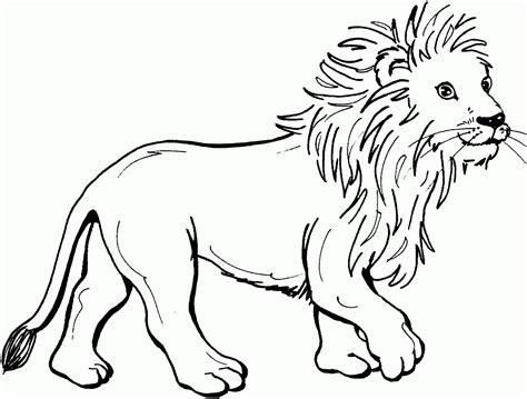 Desenho Para Pintar De Um Leo Hd Desenhoswikicom