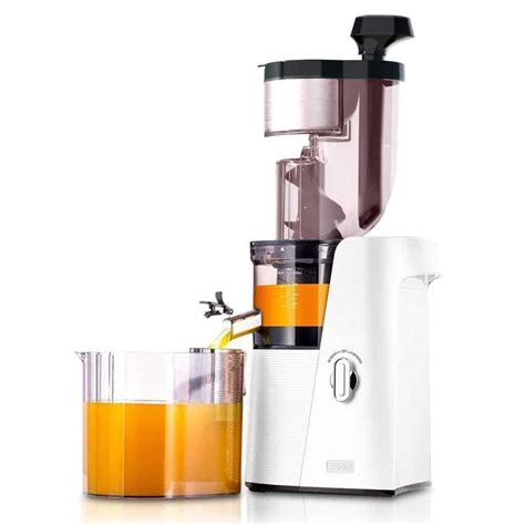 juicer vegetable masticating celery skg slow juicers carrots cold press mouth rpm a10 wide juice bpa oxidation anti volume clean
