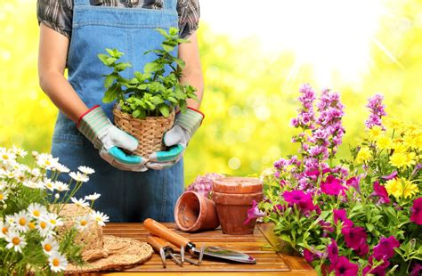 The Alibris Blog  Gardening Books For Fun And Profit