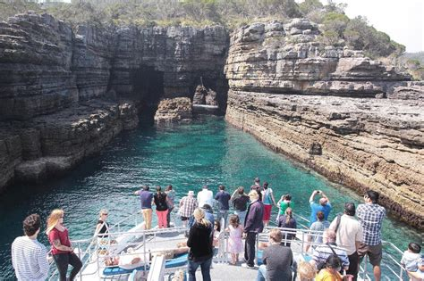 Compare prices & save money with tripadvisor (world's largest travel website). 【Sydney】Jervis Bay South Coast Cruise - Delightful Travel
