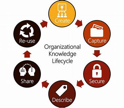 Knowledge Management Km Lifecycle Organizational Usable Strives