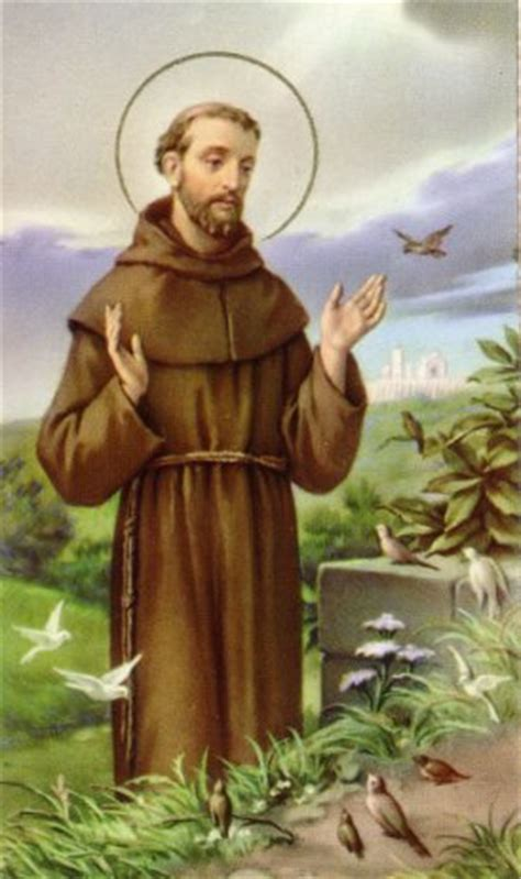 of francis of assisi st s kondadaba st francis of assisi the patron of ecologists