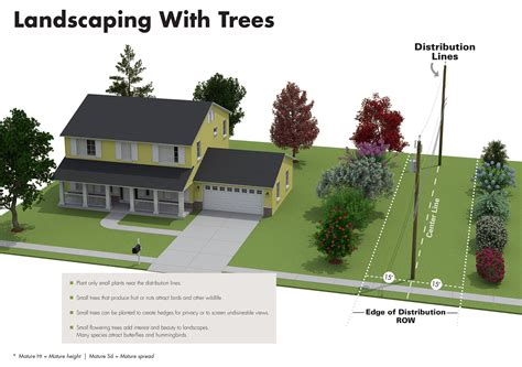 trees you can plant to house plant the right tree in the right place this fall alabama newscenter