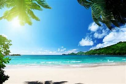 Ocean Sunshine Tropical Sea Paradise Palms Desktop