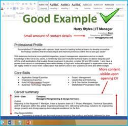 successful curriculum vitae templates cv writing advice