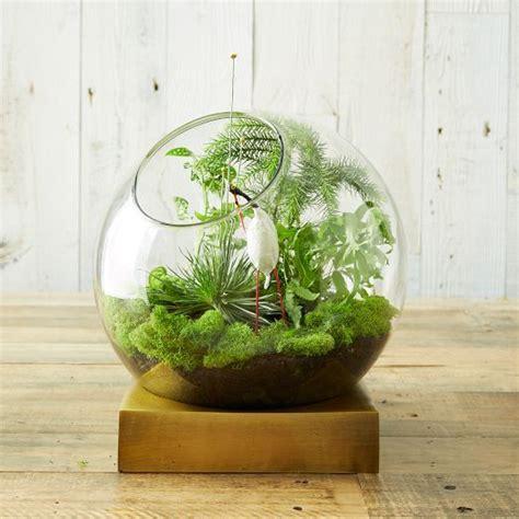 45 adorable spring terrariums for home d 233 cor digsdigs