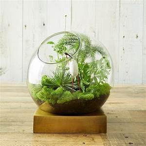 Terrarium Plante Deco : 45 adorable spring terrariums for home d cor digsdigs ~ Dode.kayakingforconservation.com Idées de Décoration