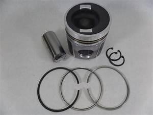 R  F  Engine Fits Cummins Cm 6c  8 3l Piston Kit 3919929  3919566  4019886  4020058 With Ring