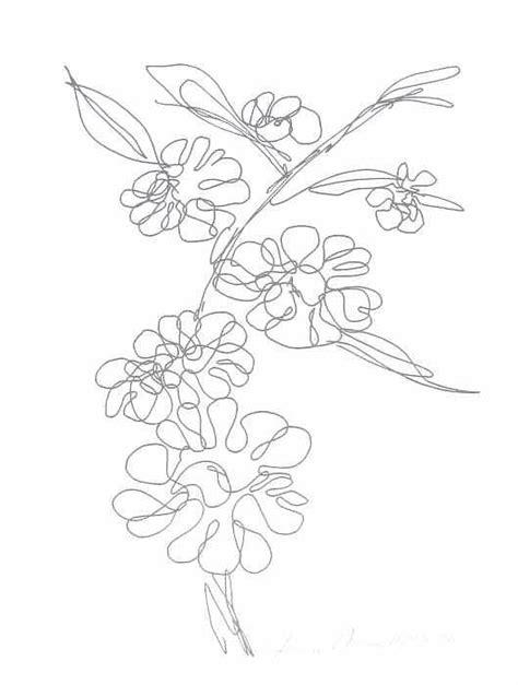 hawaiian flower drawing  joanie arvin