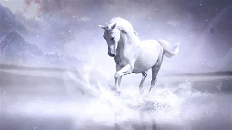 1920x1080 White Horse Laptop Full Hd 1080p Hd 4k