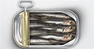Sardine fishery closed for the 3rd year in a row - KXRO ...