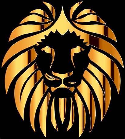 Clipart Lion Golden Clipground Help