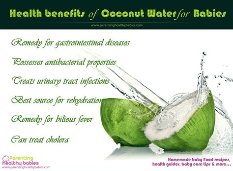 Health Benefits Of Coconut Water For Babies Private