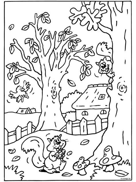Kleurplaat Herfst Eekhoorn by Kleurplaat Eekhoorn Herfst Herfst Zoeken