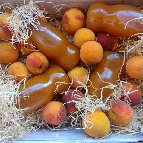 succo di frutta fatto in casa succo di frutta fatto in casa ricetta oreegano