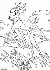 Deer Coloring Hunting Pages Printable Turkey Dog Enjoyable Leisure Totally Activity Sheets Getcolorings Forget Supplies Don Books Colorin sketch template