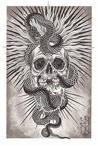 Skull And Snake Drawing