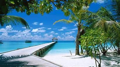 Wallpapers Computer Desktop Backgrounds Beach Background Tropical