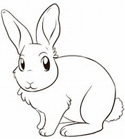 HD Wallpapers Rabbit Ears Coloring Page