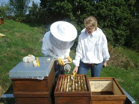 Eine frau wird von einem hochhaus gestürzt. Imkern auf Probe 2022- Bienenzuchtverein Sulzbach ...