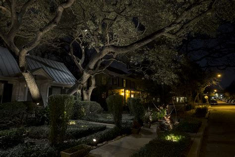 oak tree lighting 1202 live oak outdoor lighting vincent landscapes inc