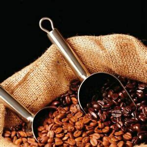 The easiest way to get the most for the money these days in by buying online. 1 Pack 20 Coffee Bean Seeds Home Garden Plant Healthy Bulk Seeds S047   eBay
