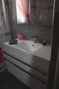 Deco Salle De Bain Gris : deco salle de bain gris et rose ~ Farleysfitness.com Idées de Décoration