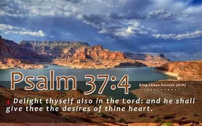 Bible Kjv Scriptures Verses Psalm 37 Wallpapers